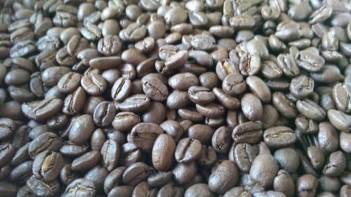 哥倫比亞-藍山咖啡豆一磅