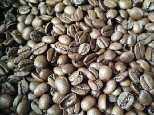 巴西喜拉朵咖啡豆半磅