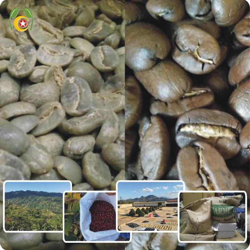 ☘莊園混搭風味0313組☘  印尼-黃金鼎上曼特寧咖啡豆 混搭 巴西咖啡 1.5磅=1050元•再送半磅(合計2磅=同一口味)